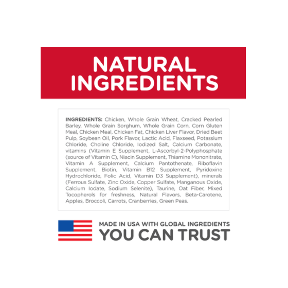 Case Squishy Gato Colores Samsung Galaxy s7
