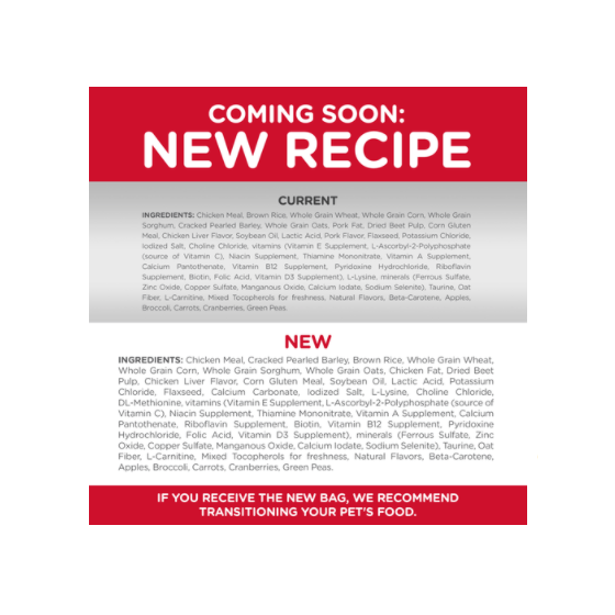 Case Squishy Oso Polar Playa Iphone 6/6s