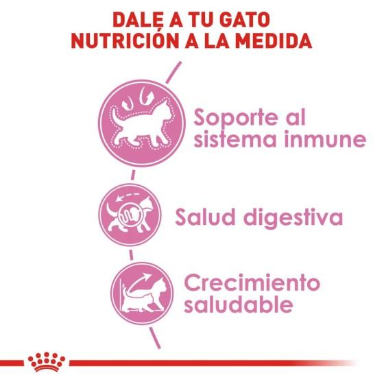 Reloj Gato Lindo