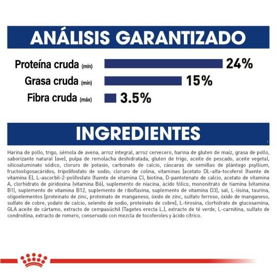 Kigurumi / Pijama Stitch (Envío gratis)