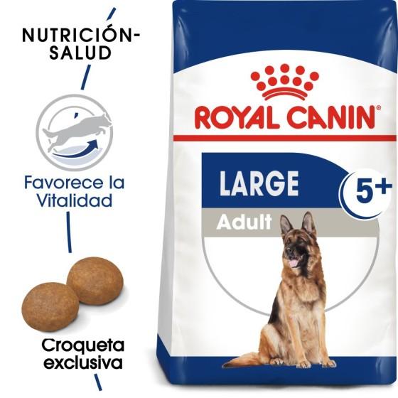 Kigurumi / Pijama Doraemon (Envío gratis)