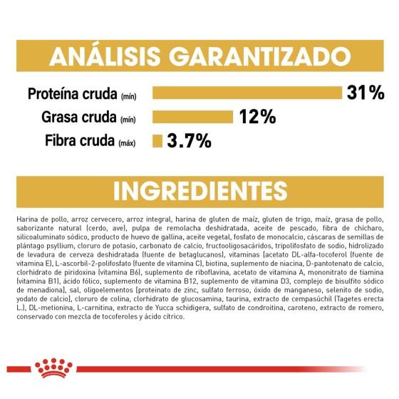 Case Squishy Foca Playa Iphone 6 Plus