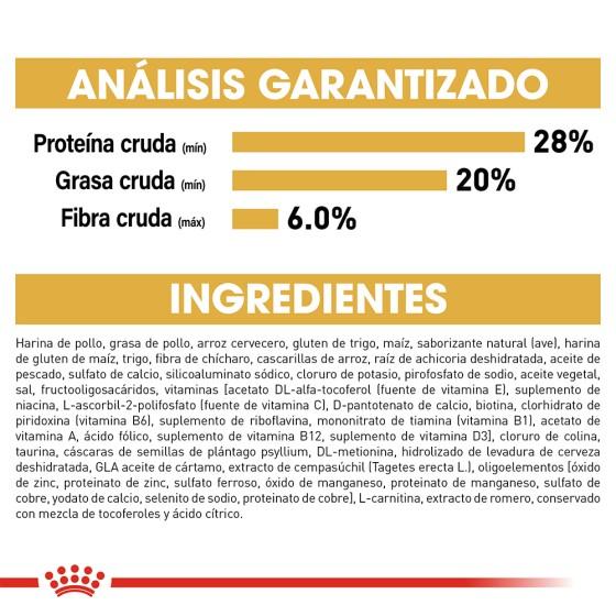Pantuflas Totoro