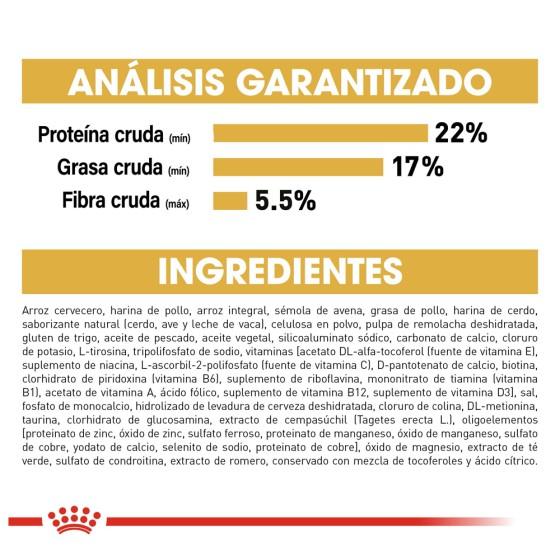 Conjunto De Pijama Plush Con Bordado