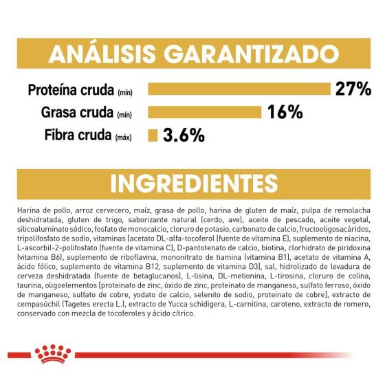 Cojin Almohada San Valentin 14 De Febrero