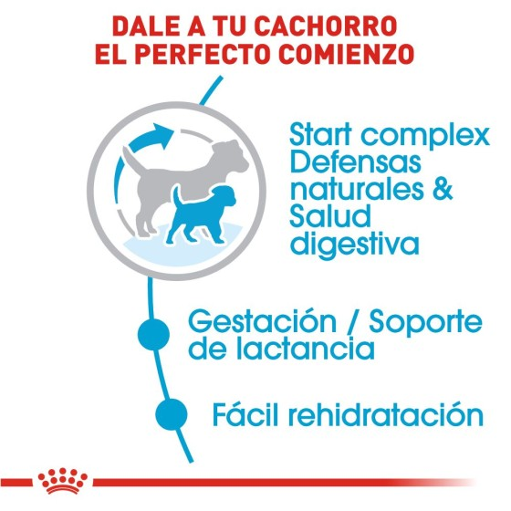 Kigurumi / Pijama Unicornio blanco