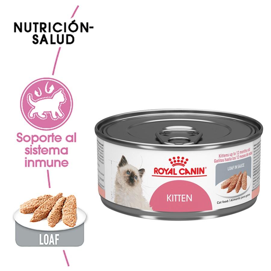 Diamond Premium Adultos 18 kg / 40 lbs