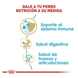 "Pelota Tejida ""Fancy Pets"""