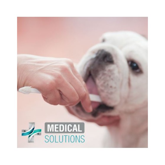 "Crackers ""Fancy Pets"" Tocino"