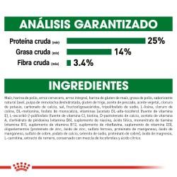 Set de joyeria acero inoxidable gato azul