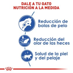 Gorra de panda