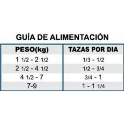 Auriculares bluethooth orejas de gato