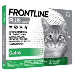 Reloj Pug