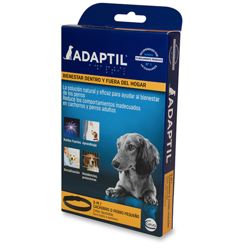 Case Iphone Squishy Oso Polar