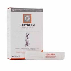 Bolsa Gato con Gafas
