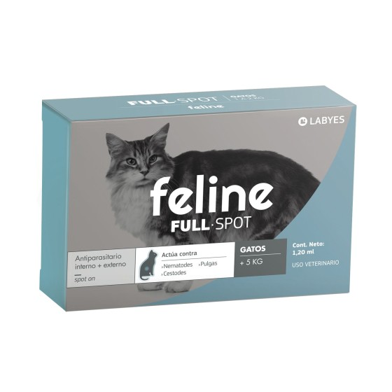 Case Squishy Foquita Iphone 5/5s/SE
